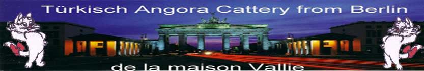 Brandenburger Tor mit Logo Links